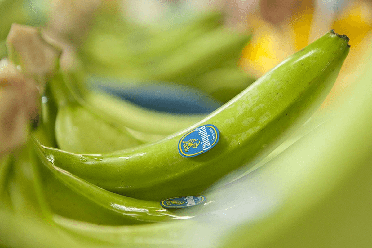 Quality standards Blue Sticker Chiquita