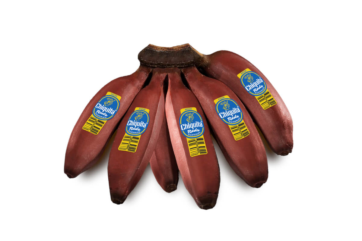 Chiquita Reds bananas