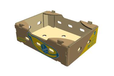 Chiquita Boxes Minis Bananas