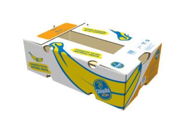Chiquita Boxes Singles Bananas