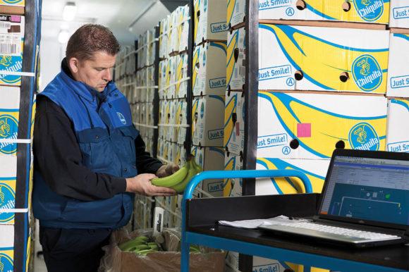 Ripening expertise Chiquita