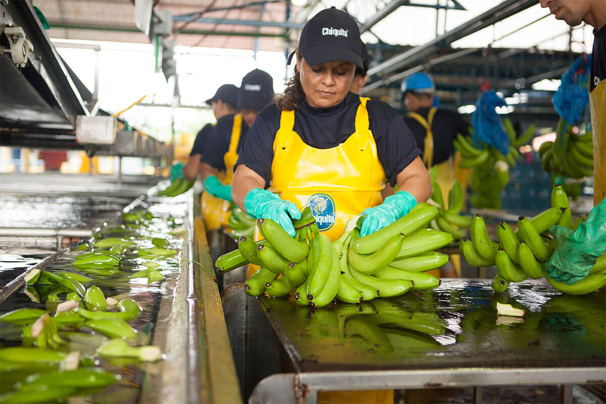 Chiquita sustainability water saving