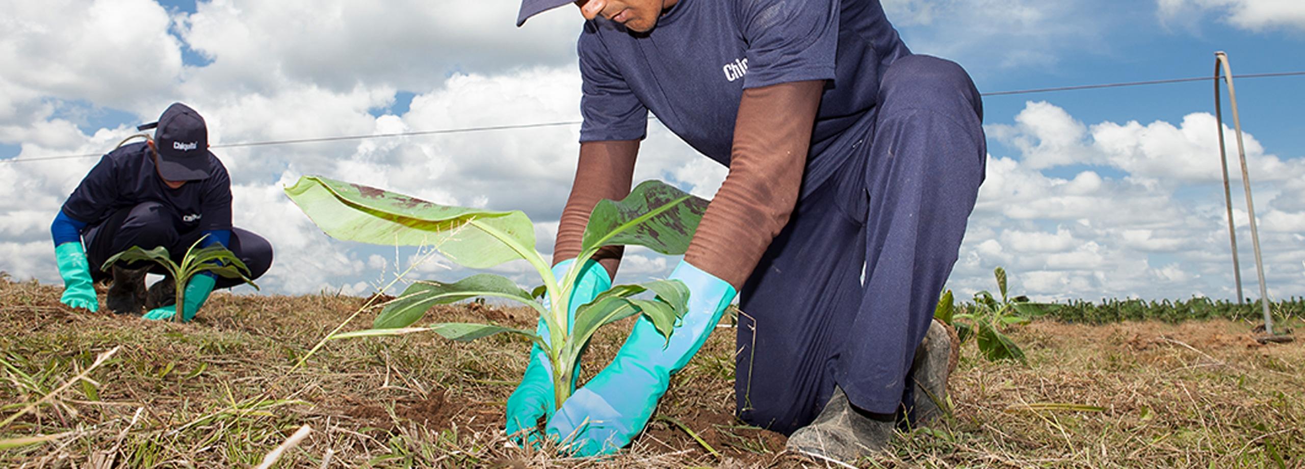 Preserving_Biodiversity_Chiquita