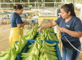 women empowerment in Chiquita
